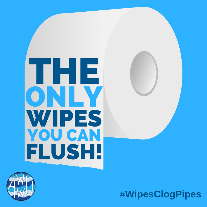 #WipesClogPipes